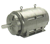 Medium Voltage (2300/4000 Volts)2