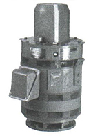 Vertical Hollow Shaft Three Phase - Weather Protected I Enclosure Motors